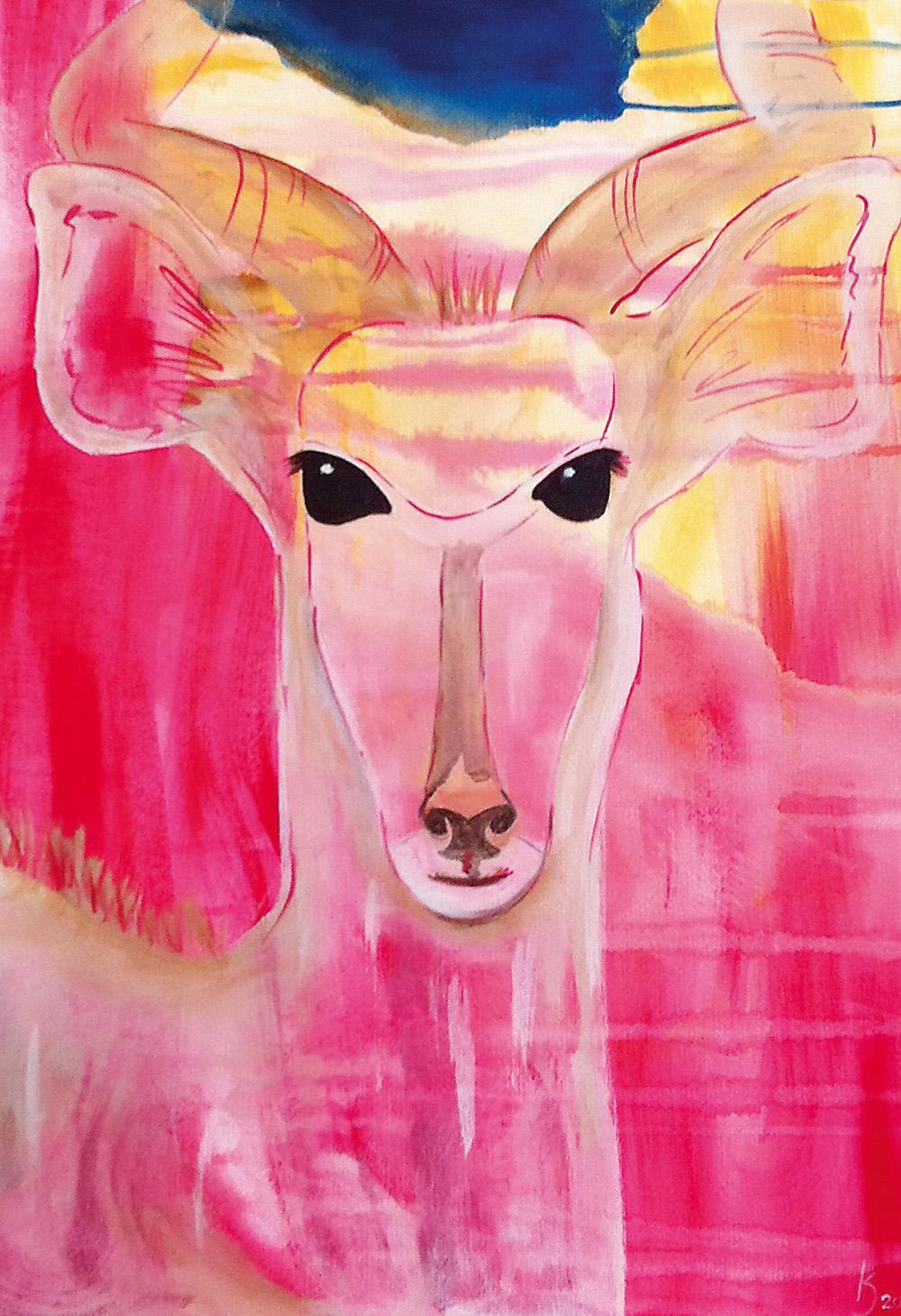 Gazelle III